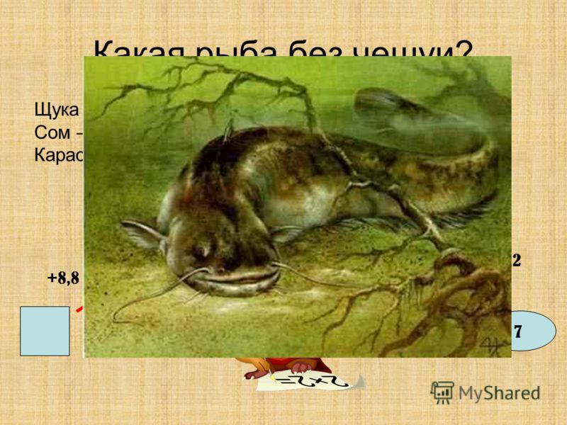 Какая рыба без чешуи? Щука – 4,3Налим – 3,5 Сом – 2Окунь – 6,1 Карась - 3 +8,8 - 9,8 +8 - 6,2 +4,2 7
