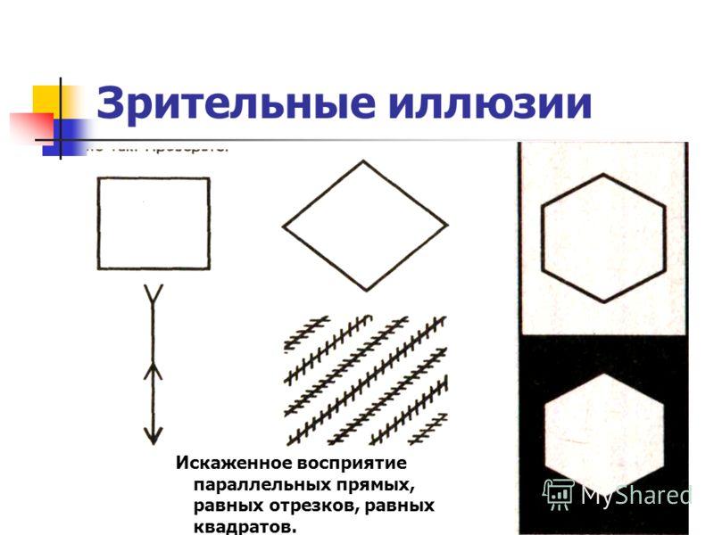 Зрительные иллюзии Искаженное восприятие параллельных прямых, равных отрезков, равных квадратов.