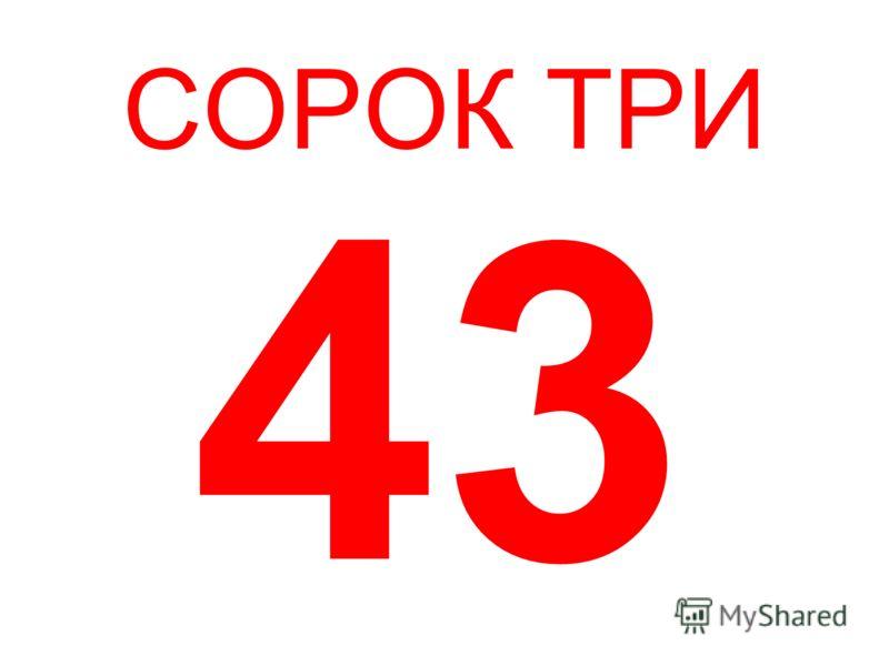 СОРОК ТРИ 43