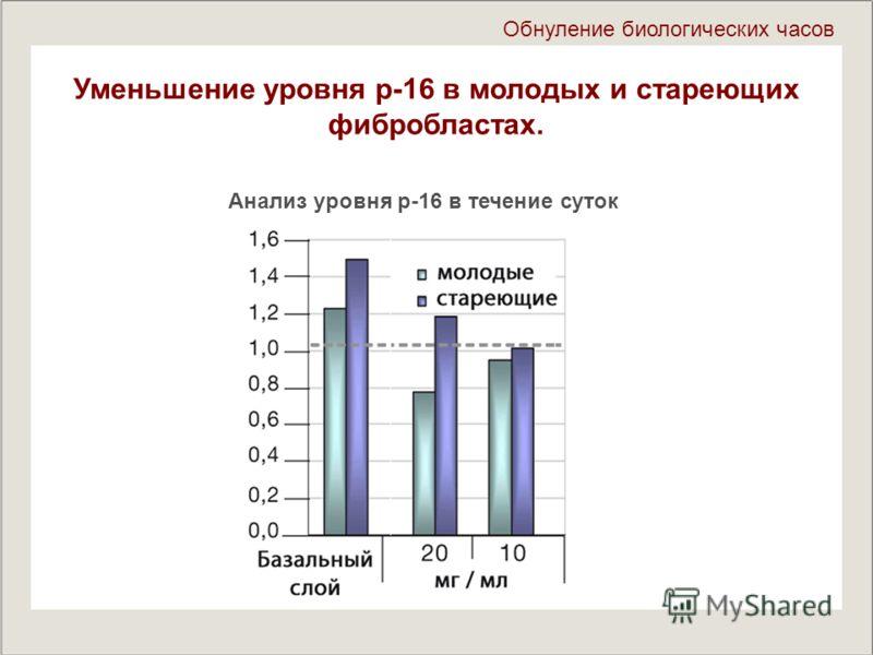 Уменьшение уровня р-16 в молодых и стареющих фибробластах. Обнуление биологических часов Анализ уровня р-16 в течение суток