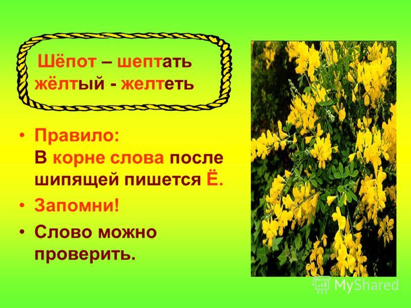 Шёпот – шептать жёлтый - желтеть Правило: В корне слова после шипящей пишется Ё. Запомни! Слово можно проверить.