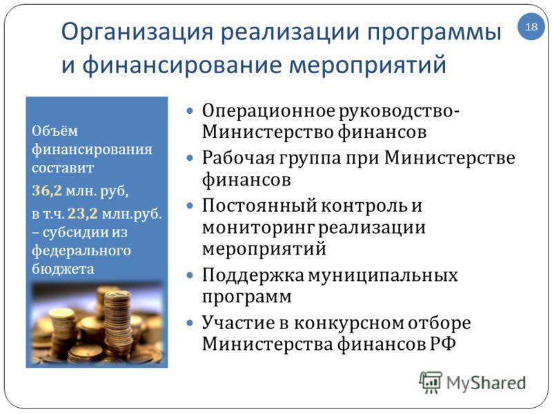Организация реализации программы и финансирование мероприятий Объём финансирования составит 36,2 млн. руб, в т. ч. 23,2 млн. руб. – субсидии из федерального бюджета 18 Операционное руководство - Министерство финансов Рабочая группа при Министерстве ф