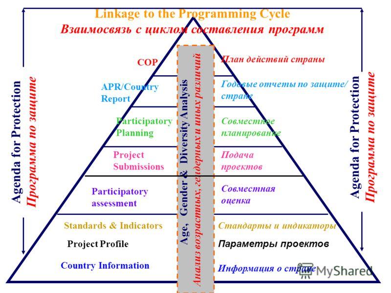 Participatory assessment Linkage to the Programming Cycle Взаимосвязь с циклом составления программ Country Information Age, Gender & Diversity Analysis Анализ возрастных, гендерных и иных различий Project Profile Standards & Indicators COP План дейс