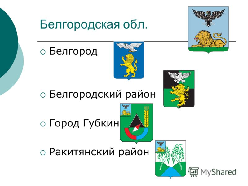 Белгородская обл. Белгород Белгородский район Город Губкин Ракитянский район