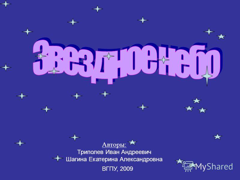 Авторы: Триполев Иван Андреевич Шагина Екатерина Александровна ВГПУ, 2009