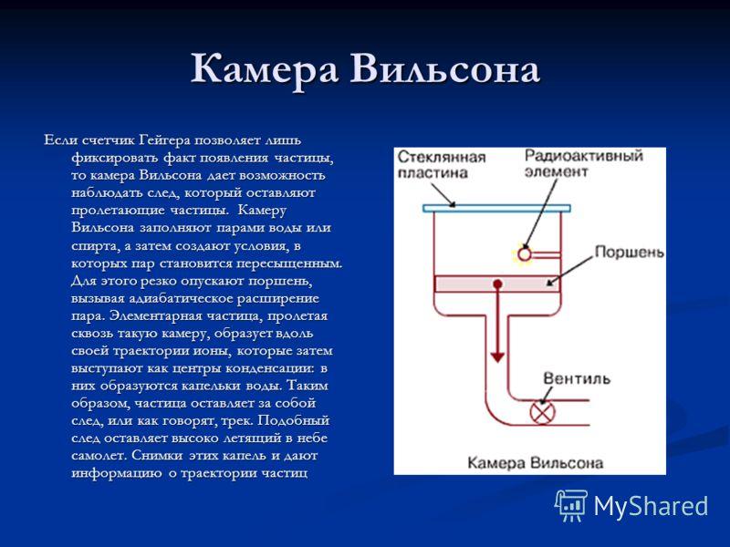 как определить наличие глистов в организме человека