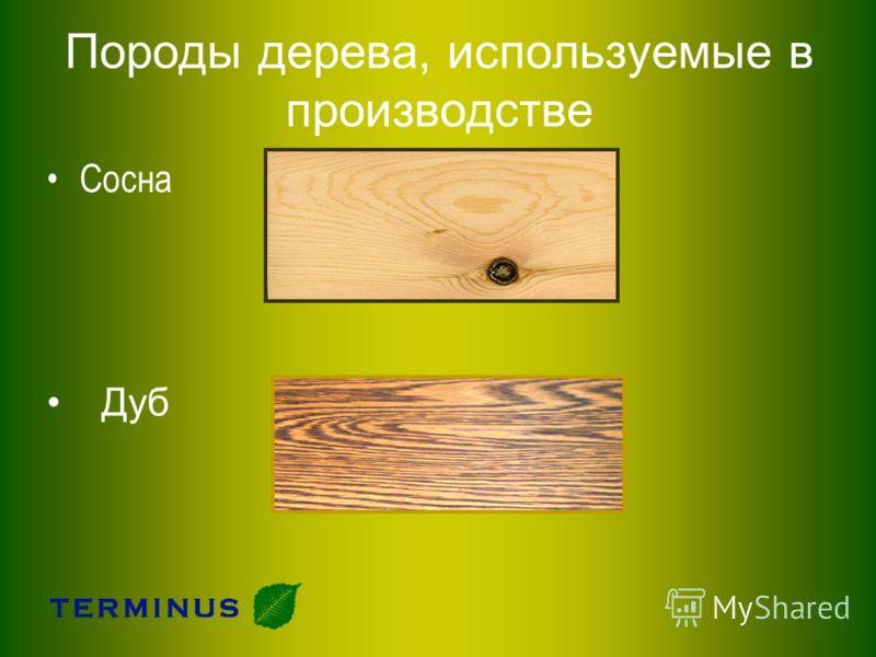 Породы дерева, используемые в производстве Сосна Дуб