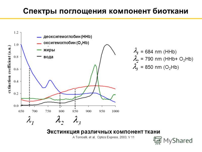 Экстинкция различных компонент ткани A Torricelli, et al, Optics Express, 2003, V 11 Спектры поглощения компонент биоткани оксигемоглобин (O 2 Hb) деоксигемоглобин (HHb) жиры вода = 684 nm (HHb) = 790 nm (HHb+ O 2 Hb) = 850 nm (O 2 Hb)