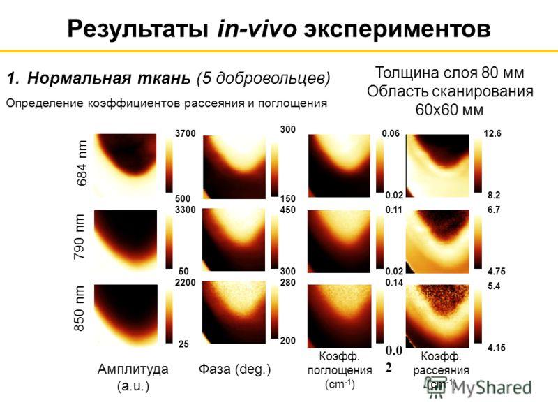 Фаза (deg.)Амплитуда (a.u.) 2200 790 nm 850 nm 684 nm 500 3700 50 3300 25 6.7 0.02 0.11 0.0 2 0.14 0.02 0.0612.6 8.2 4.75 4.15 5.4 150 300 450 200 280 Коэфф. поглощения (cm -1 ) Коэфф. рассеяния (cm -1 ) Толщина слоя 80 мм Область сканирования 60x60
