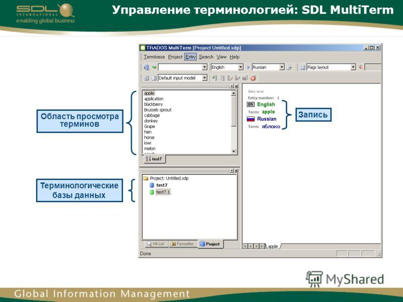 Управление терминологией: SDL MultiTerm Запись Терминологические базы данных Область просмотра терминов