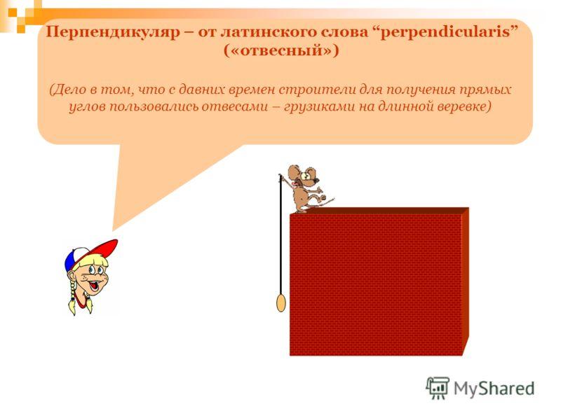 Перпендикуляр – от латинского слова perpendicularis («отвесный») (Дело в том, что с давних времен строители для получения прямых углов пользовались отвесами – грузиками на длинной веревке)