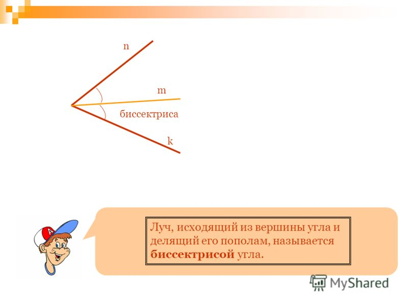 n m k биссектриса Луч, исходящий из вершины угла и делящий его пополам, называется биссектрисой угла.