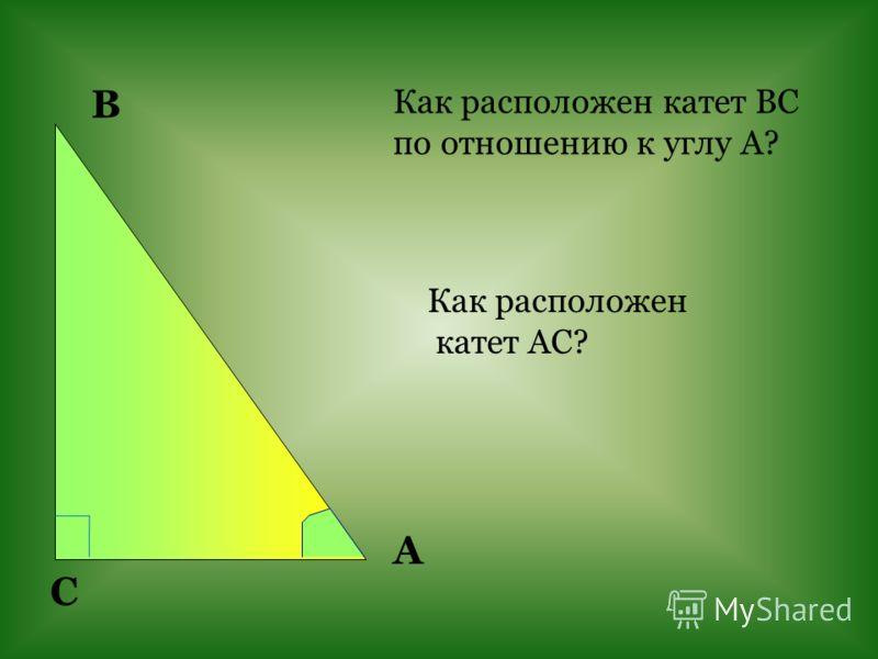 Как расположен катет ВС по отношению к углу А? C В А Как расположен катет АС?