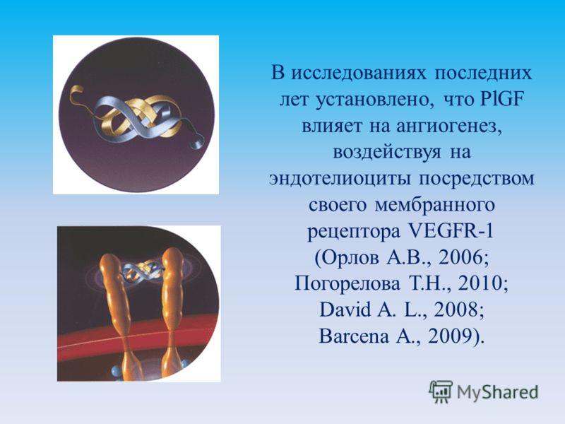 В исследованиях последних лет установлено, что PlGF влияет на ангиогенез, воздействуя на эндотелиоциты посредством своего мембранного рецептора VEGFR-1 (Орлов А.В., 2006; Погорелова Т.Н., 2010; David A. L., 2008; Barcena А., 2009).