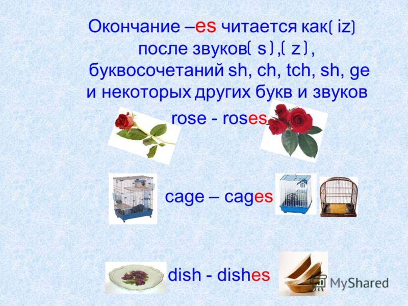 Окончание – es читается как iz после звуков s, z, буквосочетаний sh, ch, tch, sh, ge и некоторых других букв и звуков rose - roses cage – cages dish - dishes