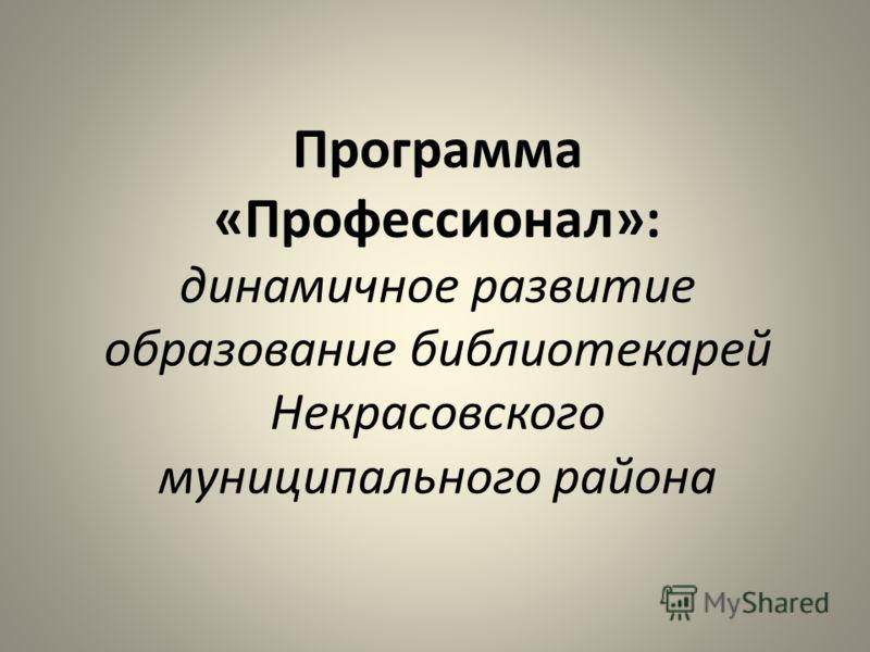 Программа «Профессионал»: динамичное развитие образование библиотекарей Некрасовского муниципального района