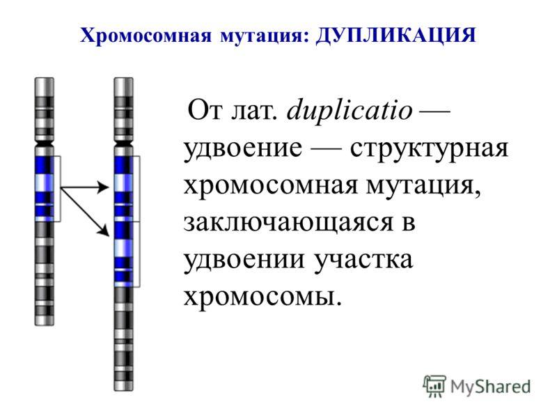 Хромосомная мутация: ДУПЛИКАЦИЯ От лат. duplicatio удвоение структурная хромосомная мутация, заключающаяся в удвоении участка хромосомы.
