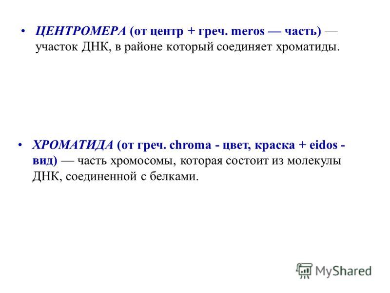 ЦЕНТРОМЕРА (от центр + греч. meros часть) участок ДНК, в районе который соединяет хроматиды. ХРОМАТИДА (от греч. chroma - цвет, краска + eidos - вид) часть хромосомы, которая состоит из молекулы ДНК, соединенной с белками.