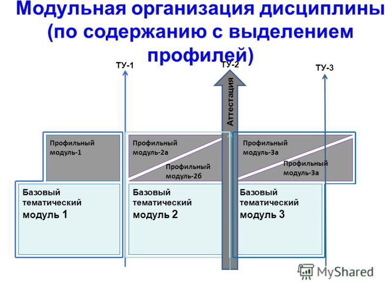 Базовый тематический модуль 1 Базовый тематический модуль 2 Базовый тематический модуль 3 ТУ-3 ТУ-2 ТУ-1 Аттестация Профильный модуль-1 Профильный модуль-2а Профильный модуль-2б Профильный модуль-3а Модульная организация дисциплины (по содержанию с в