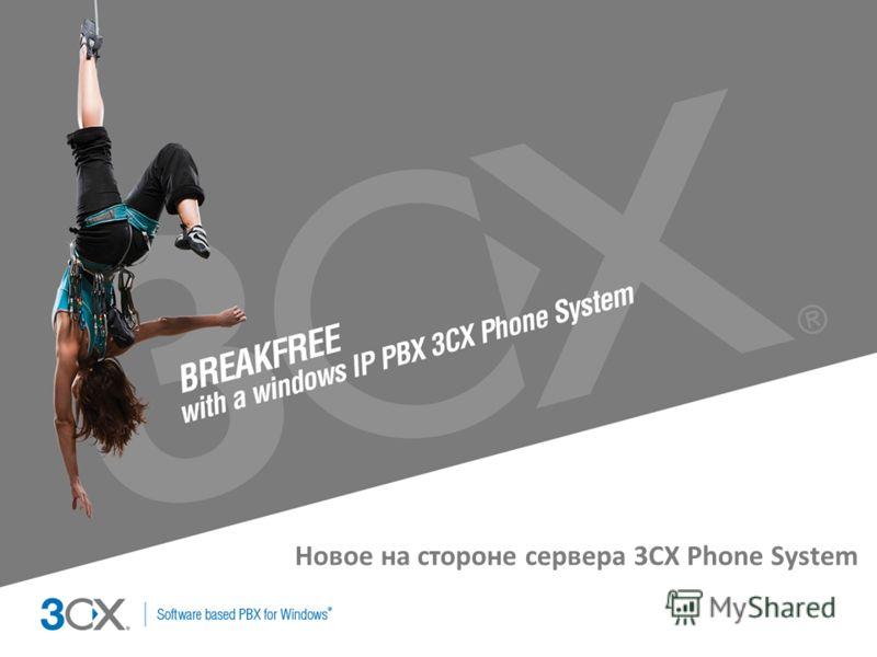 Copyright © 2002 ACNielsen a VNU company Новое на стороне сервера 3CX Phone System