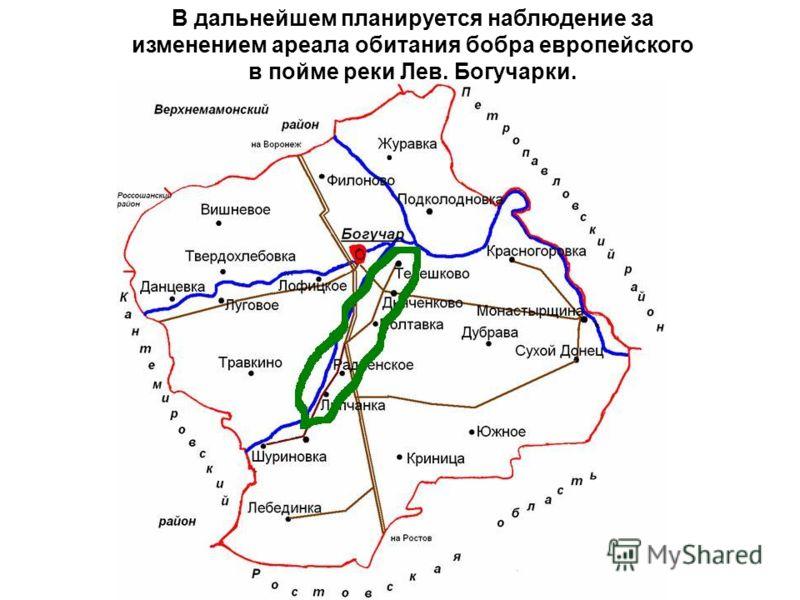 В дальнейшем планируется наблюдение за изменением ареала обитания бобра европейского в пойме реки Лев. Богучарки.