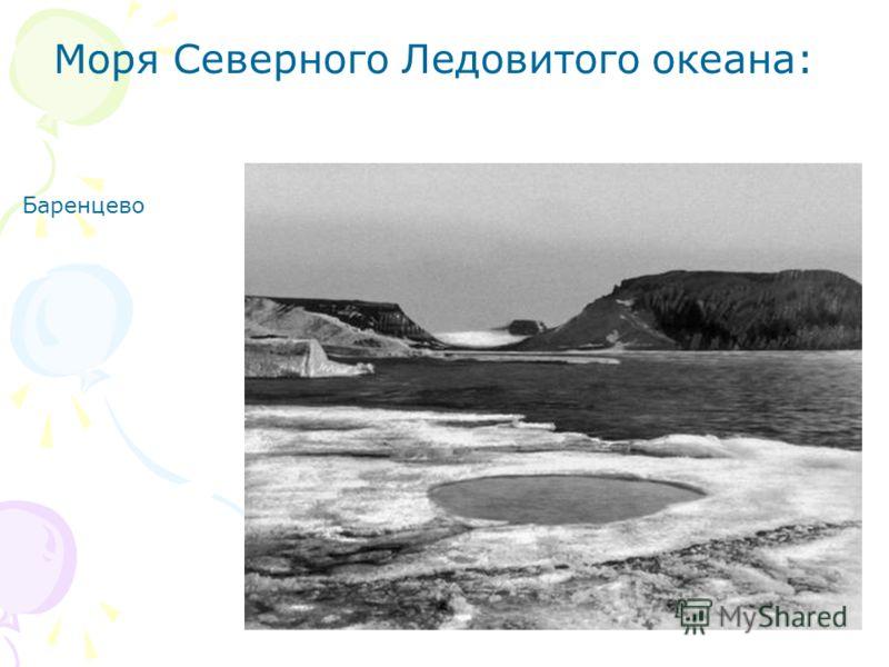 Моря Северного Ледовитого океана: Баренцево
