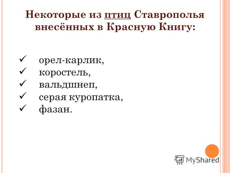 Некоторые из птиц Ставрополья внесённых в Красную Книгу: орел-карлик, коростель, вальдшнеп, серая куропатка, фазан.