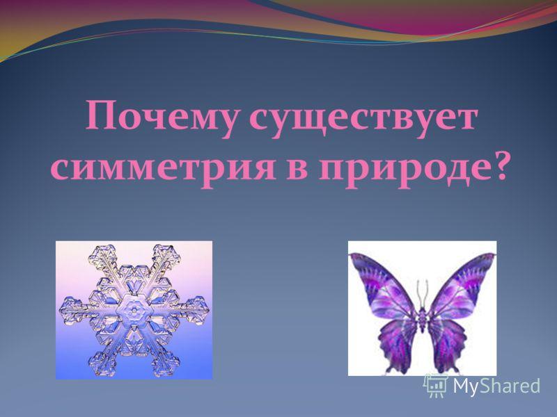 Почему существует симметрия в природе?