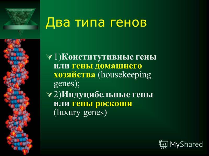 Два типа генов 1)Конститутивные гены или гены домашнего хозяйства (housekeeping genes); 2)Индуцибельные гены или гены роскоши (luxury genes)