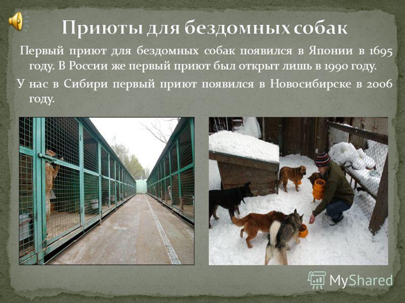 Первый приют для бездомных собак появился в Японии в 1695 году. В России же первый приют был открыт лишь в 1990 году. У нас в Сибири первый приют появился в Новосибирске в 2006 году.