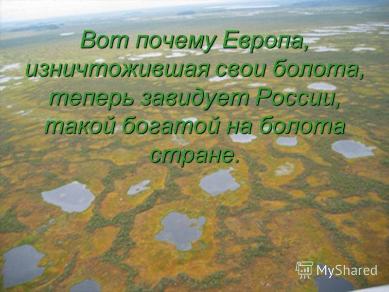 Вот почему Европа, изничтожившая свои болота, теперь завидует России, такой богатой на болота стране.