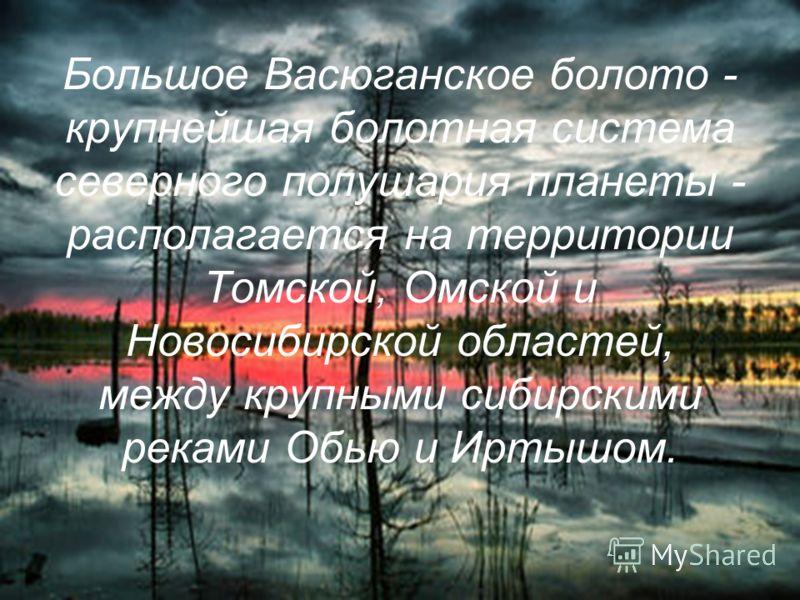Большое Васюганское болото - крупнейшая болотная система северного полушария планеты - располагается на территории Томской, Омской и Новосибирской областей, между крупными сибирскими реками Обью и Иртышом.