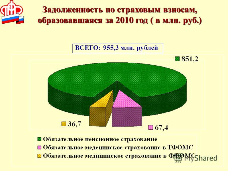 Задолженность по страховым взносам, образовавшаяся за 2010 год ( в млн. руб.) ВСЕГО: 955,3 млн. рублей