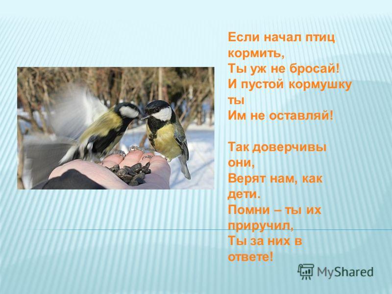 Если начал птиц кормить, Ты уж не бросай! И пустой кормушку ты Им не оставляй! Так доверчивы они, Верят нам, как дети. Помни – ты их приручил, Ты за них в ответе!