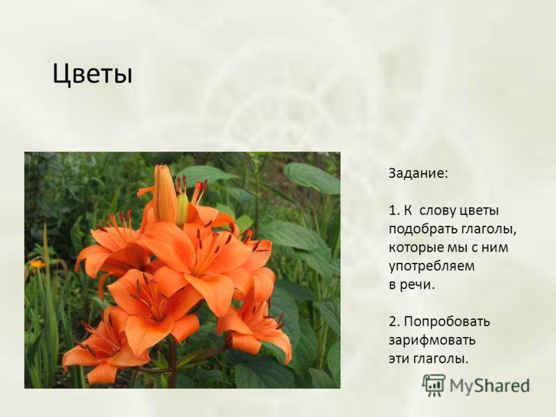 Цветы Задание: 1. К слову цветы подобрать глаголы, которые мы с ним употребляем в речи. 2. Попробовать зарифмовать эти глаголы.