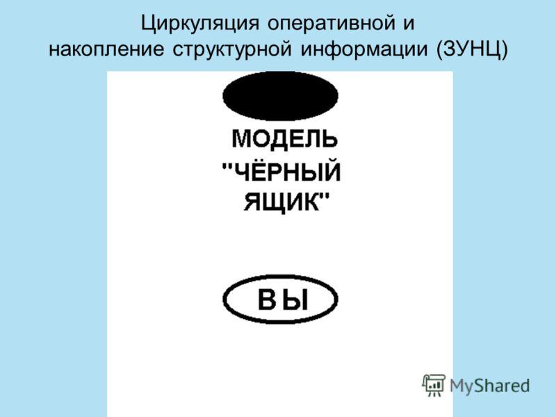 Циркуляция оперативной и накопление структурной информации (ЗУНЦ)