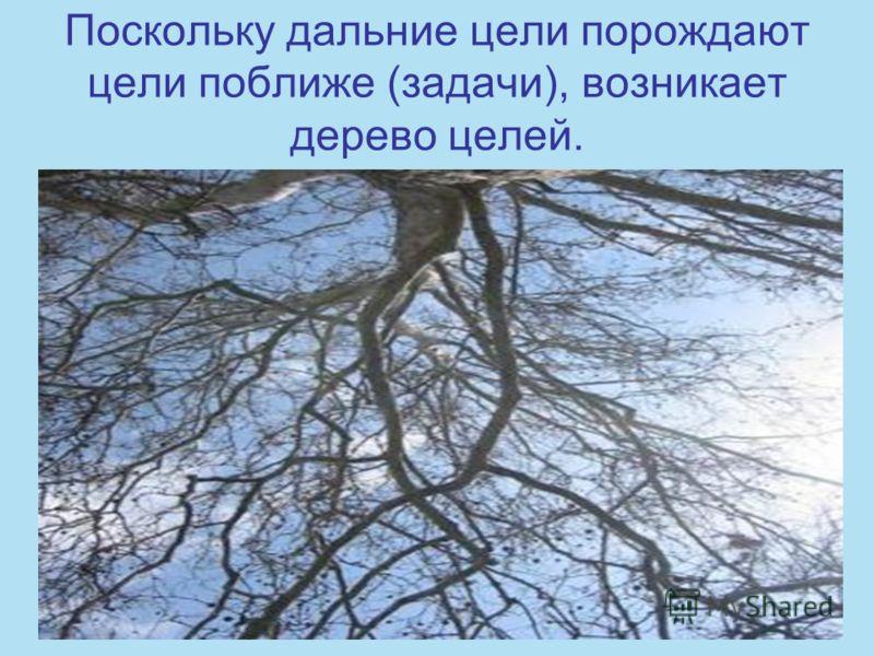 Поскольку дальние цели порождают цели поближе (задачи), возникает дерево целей.
