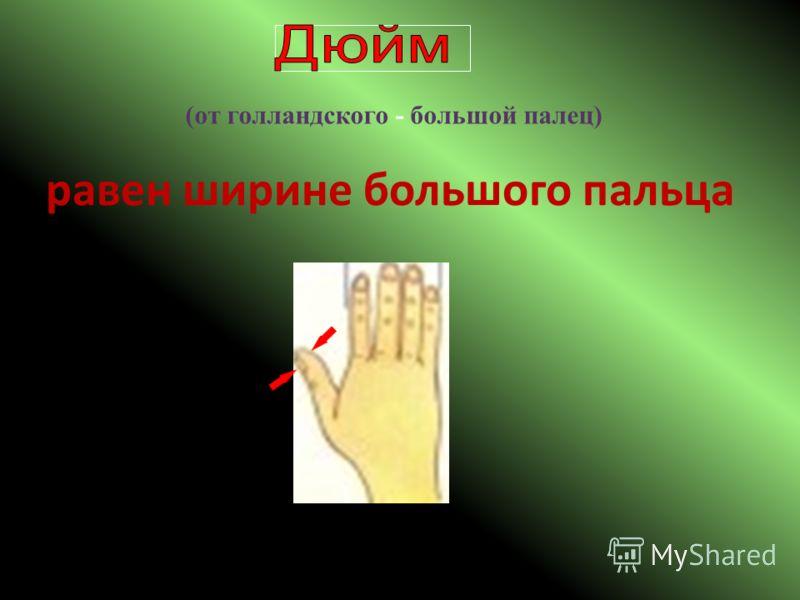 ( от голландского - большой палец ) равен ширине большого пальца