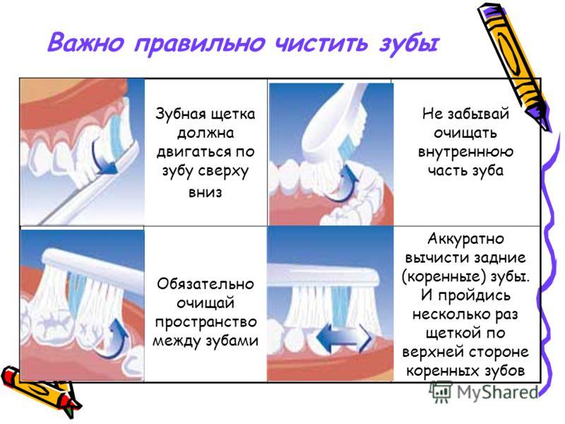 Важно правильно чистить зубы Зубная щетка должна двигаться по зубу сверху вниз Не забывай очищать внутреннюю часть зуба Обязательно очищай пространство между зубами Аккуратно вычисти задние (коренные) зубы. И пройдись несколько раз щеткой по верхней