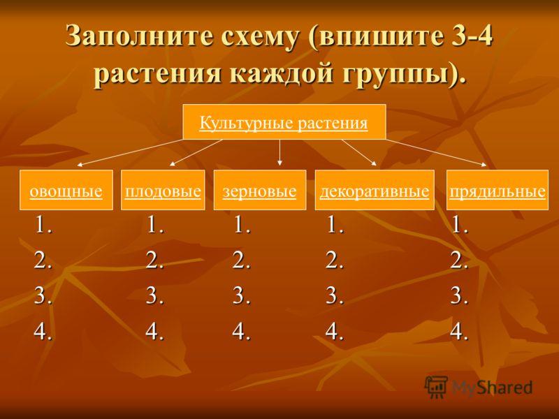 Заполните схему (впишите 3-4 растения каждой группы). 1. 1. 1. 1. 1. 2. 2. 2. 2. 2. 3. 3. 3. 3. 3. 4. 4. 4. 4. 4. Культурные растения овощныеплодовыезерновые декоративныепрядильные