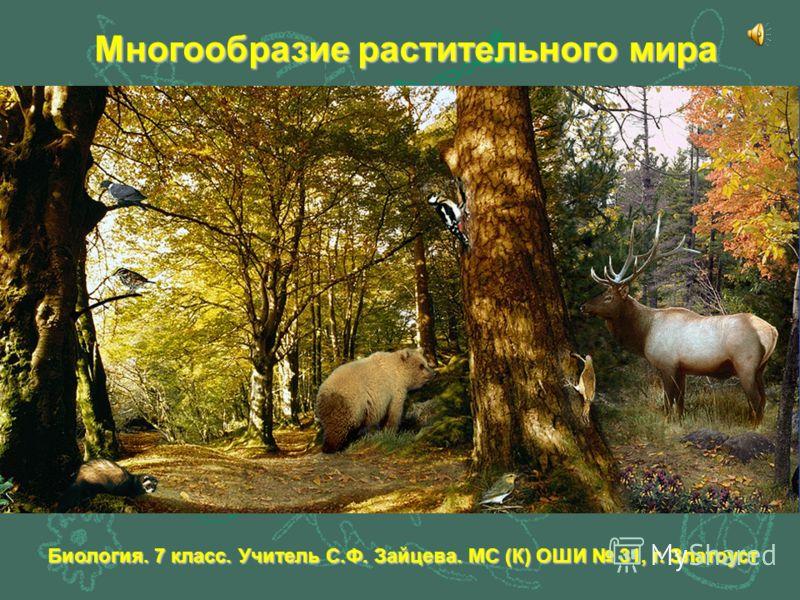 Многообразие растительного мира Биология. 7 класс. Учитель С.Ф. Зайцева. МС (К) ОШИ 31, г. Златоуст