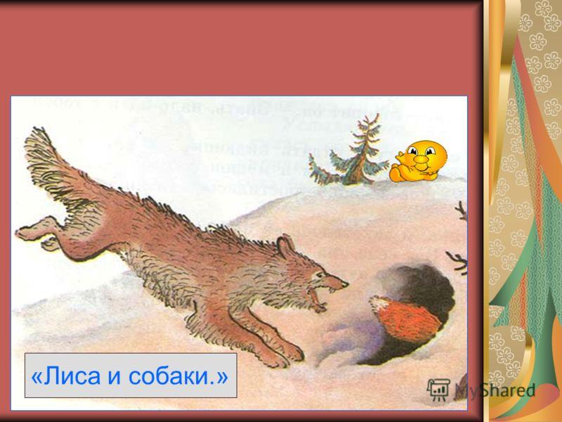 «Лиса и собаки.»