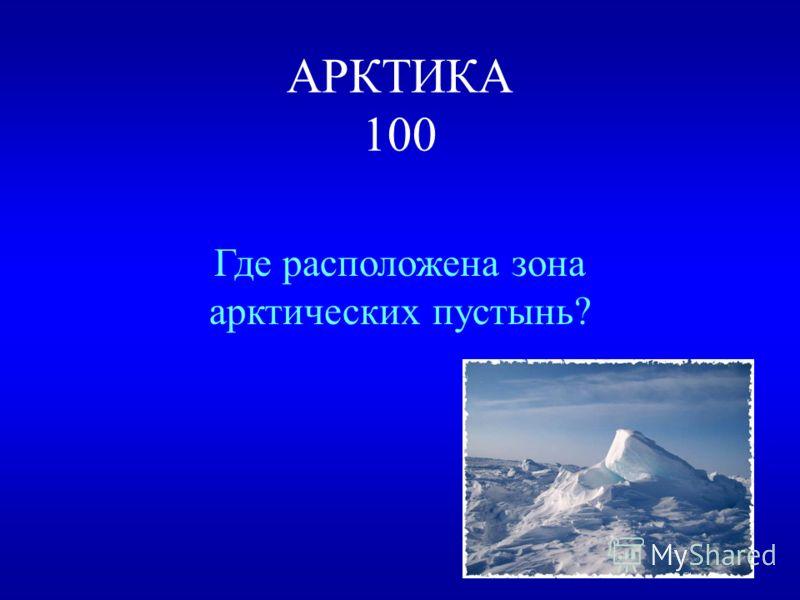 ПРИРОДНЫЕ ЗОНЫ РОССИИ Арктика 100200300400500 Зона лесов 100200300400500 Зона степей 100200300400500 Зона пустынь 100200300400500 У Черного моря 100200300400500 ВЫХОД