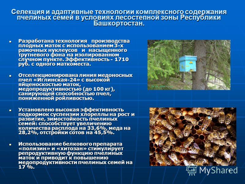 9 Селекция и адаптивные технологии комплексного содержания пчелиных семей в условиях лесостепной зоны Республики Башкортостан. Разработана технология производства плодных маток с использованием 3-х рамочных нуклеусов и насыщенного трутневого фона на