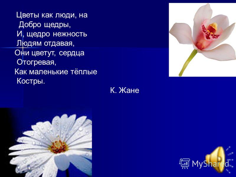 Цветы как люди, на Добро щедры, И, щедро нежность Людям отдавая, Они цветут, сердца Отогревая, Как маленькие тёплые Костры. К. Жане