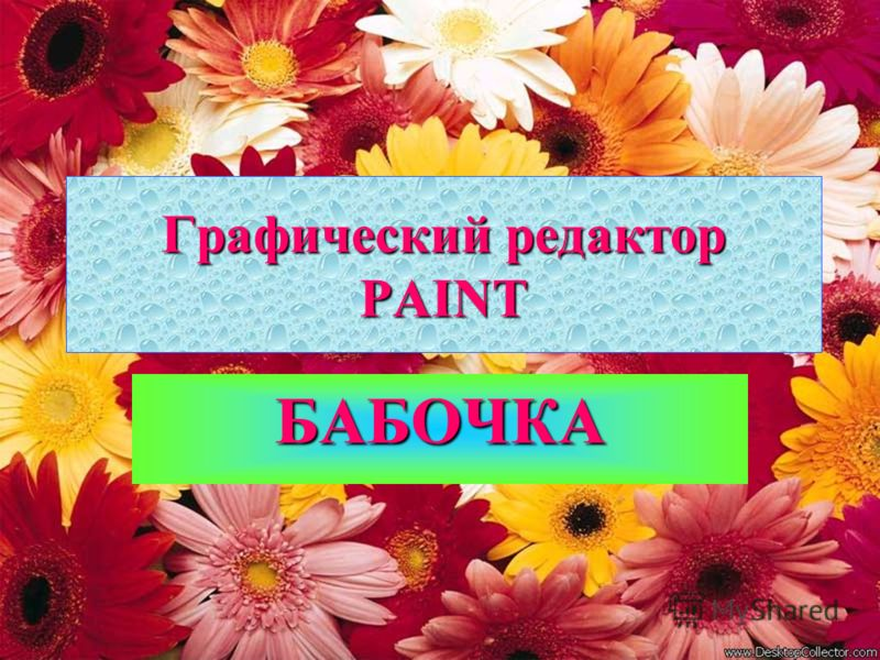 Графический редактор PAINT БАБОЧКА