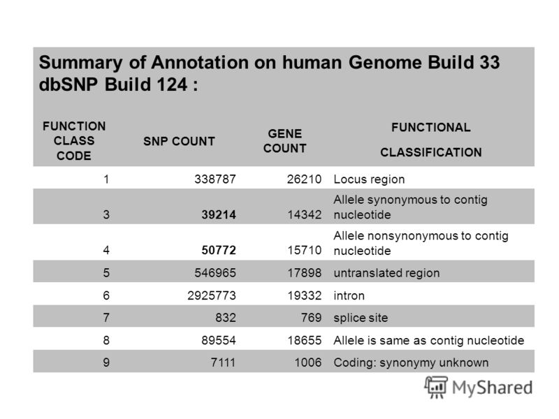 Summary of Annotation on human Genome Build 33 dbSNP Build 124 : FUNCTION CLASS CODE SNP COUNT GENE COUNT FUNCTIONAL CLASSIFICATION 133878726210Locus region 33921414342 Allele synonymous to contig nucleotide 45077215710 Allele nonsynonymous to contig