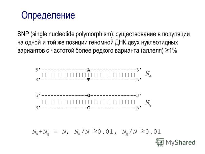 Определение SNP (single nucleotide polymorphism): существование в популяции на одной и той же позиции геномной ДНК двух нуклеотидных вариантов с частотой более редкого варианта (аллеля) 1% 5---------------A---------------3 |||||||||||||||||||||||||||
