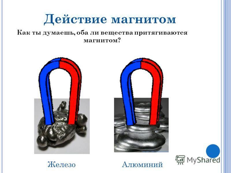 Действие магнитом АлюминийЖелезо Как ты думаешь, оба ли вещества притягиваются магнитом?