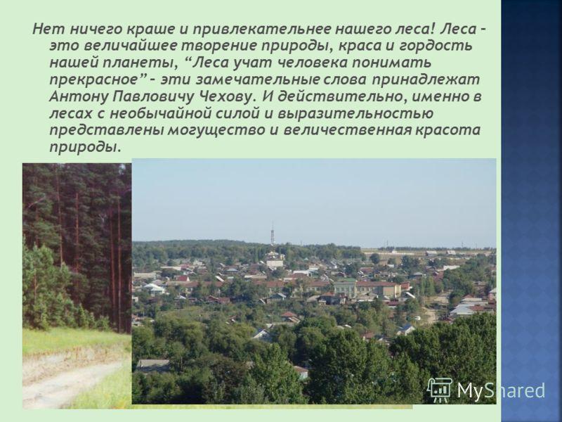 Нет ничего краше и привлекательнее нашего леса! Леса – это величайшее творение природы, краса и гордость нашей планеты, Леса учат человека понимать прекрасное – эти замечательные слова принадлежат Антону Павловичу Чехову. И действительно, именно в ле